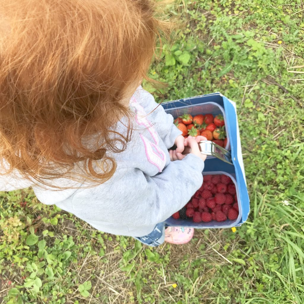 A photo of a girl holding a basket of freshly picked strawberries and raspberries