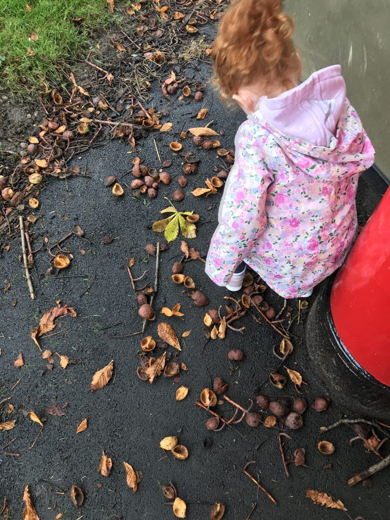 A photo of a girl looking for conkers